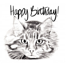 FB2271 Happy Birthday Cat