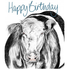 FB2275 Belted Galloway - Happy Birthday